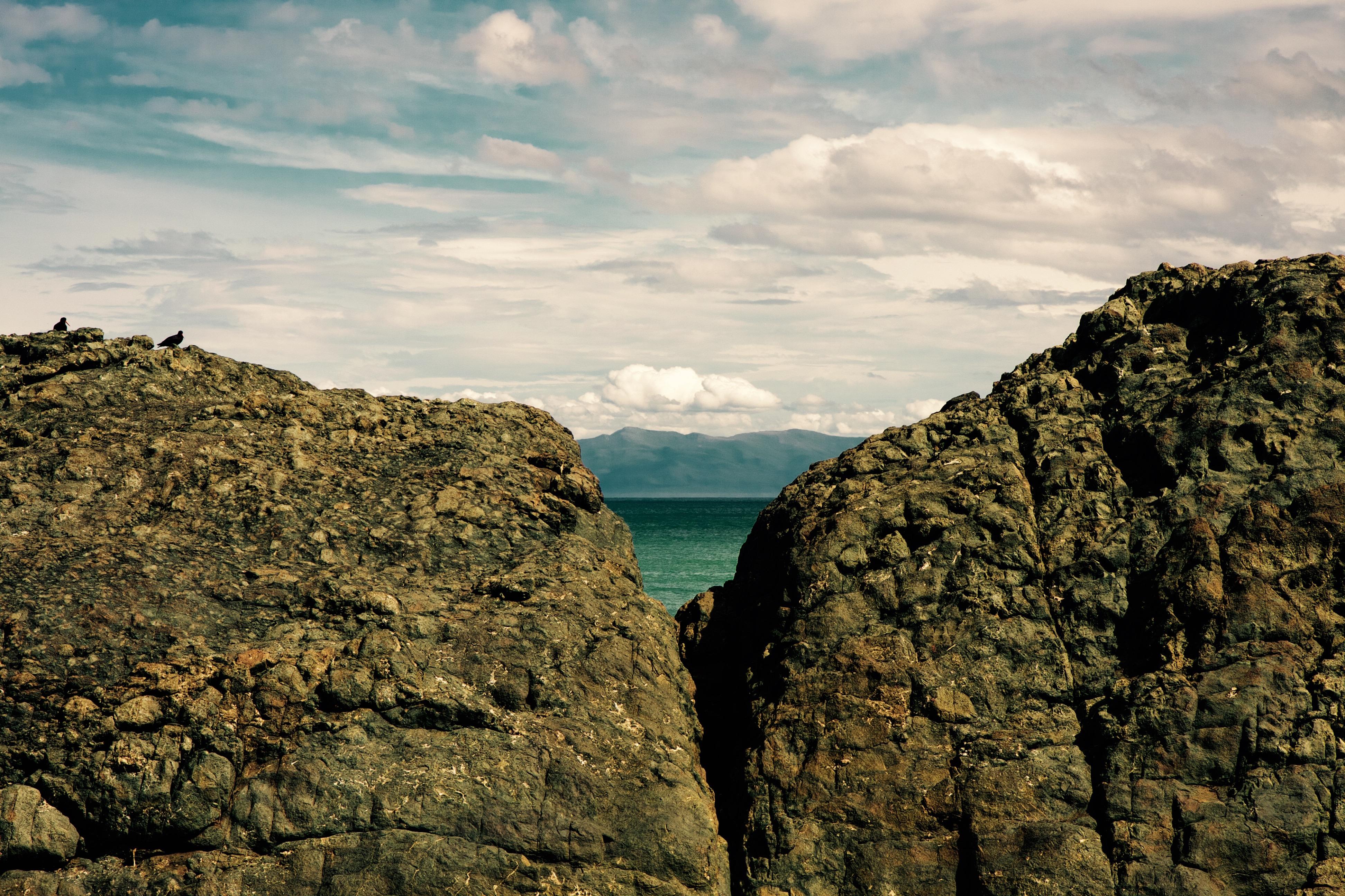 Kiwi Wine Benefits Img